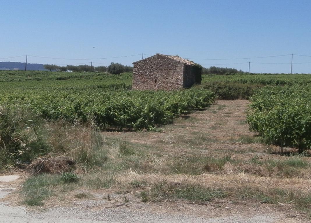 permis de construire agricole Puymeras